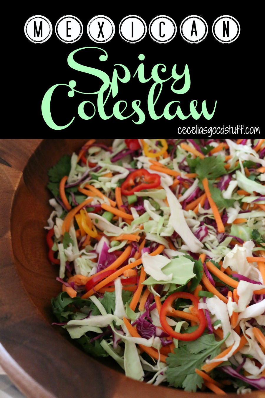 Easy and Healthy Recipe for Mexican Spicy Coleslaw with Red Chile Vinaigrette.