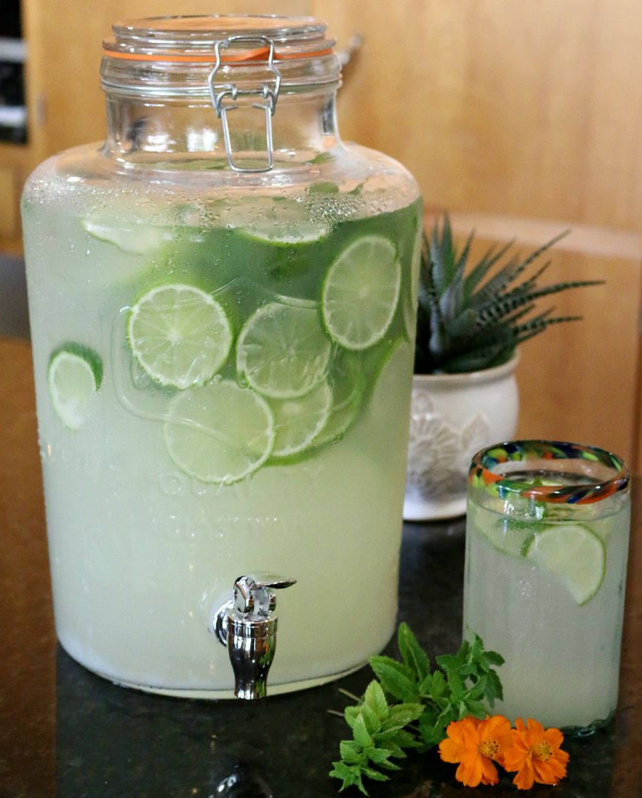 Fresh Homemade Lemon Limeade
