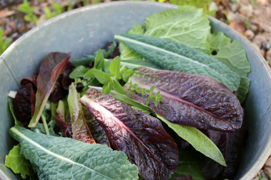 how to make fresh greens
