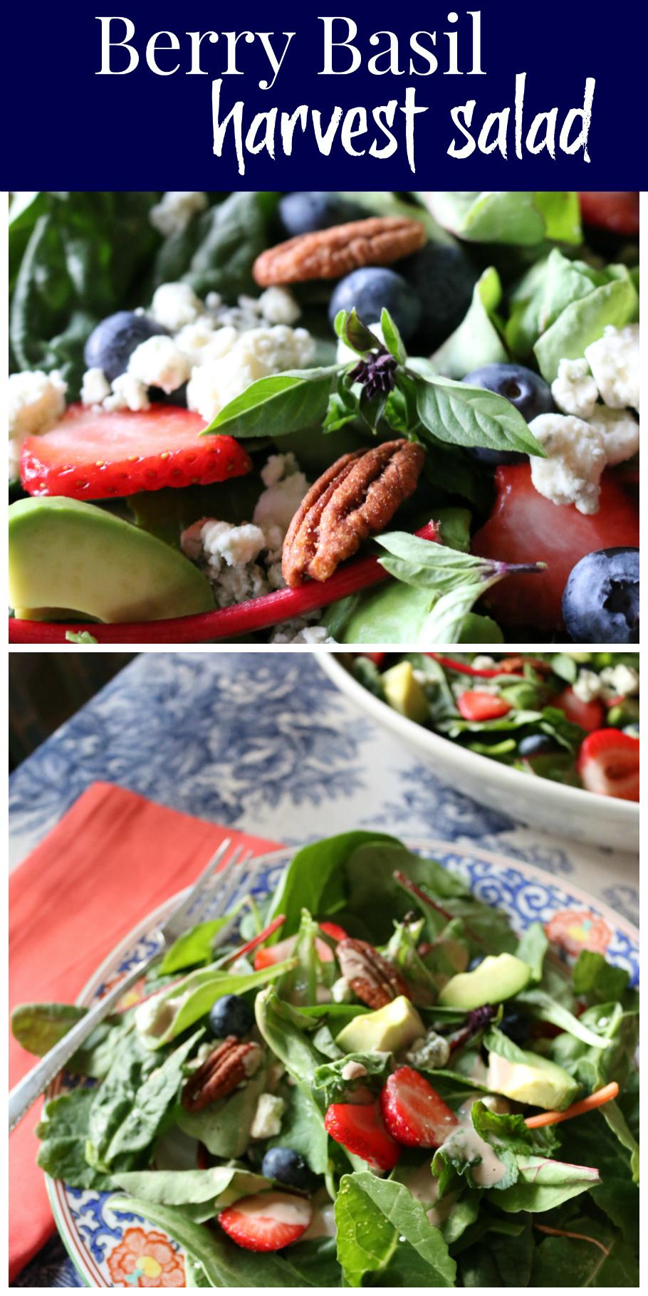 Berry Basil Harvest Salad | CeceliasGoodStuff.com | Good Food for Good People
