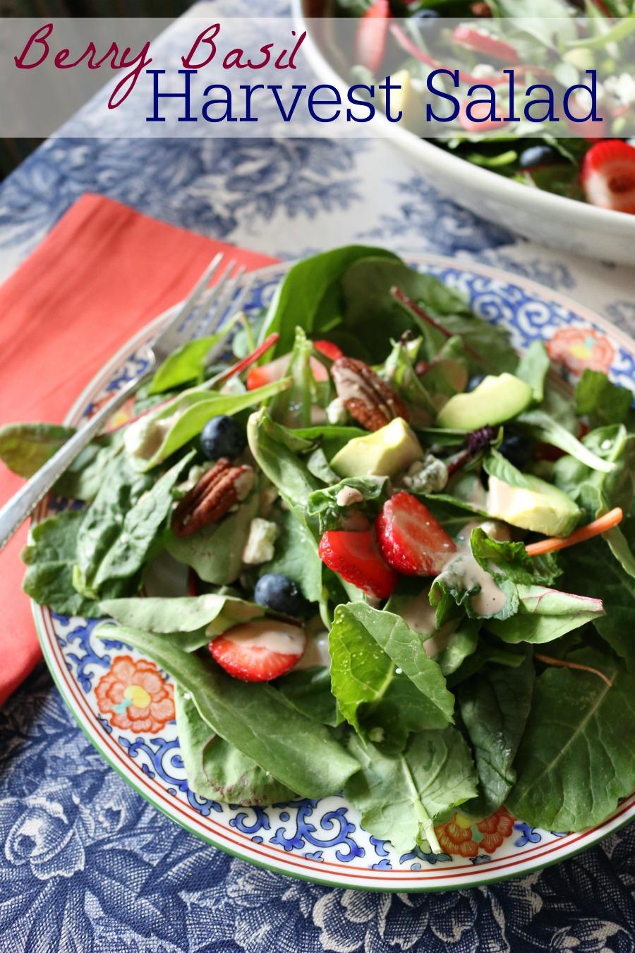 Berry Basil Harvest Salad with a slightly sweet honey vinaigrette.