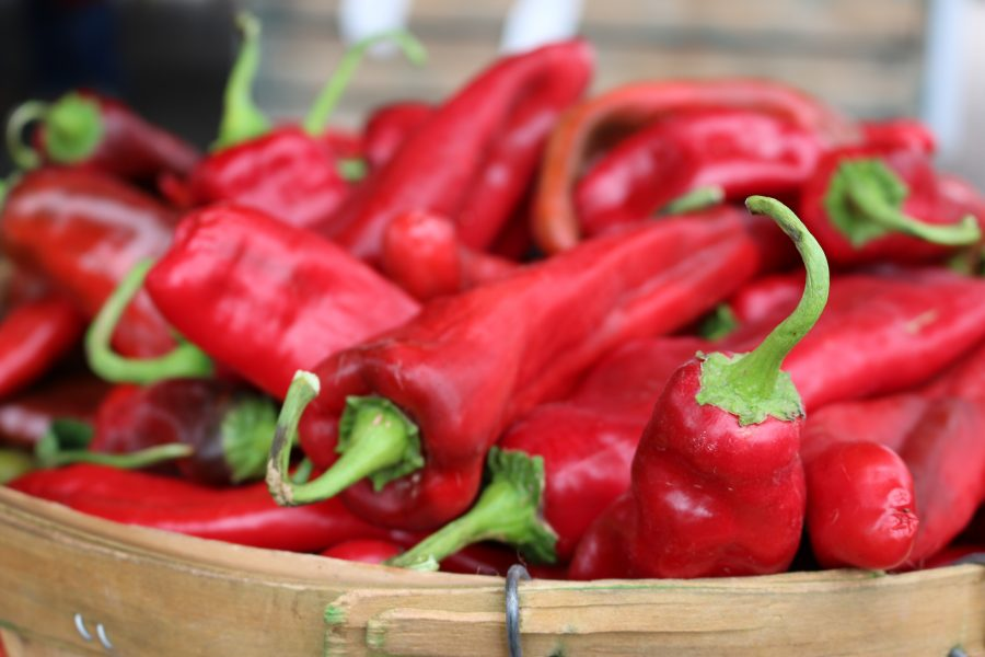 New Mexico Red Chiles CeceliasGoodStuff.com| Good Food for Good People