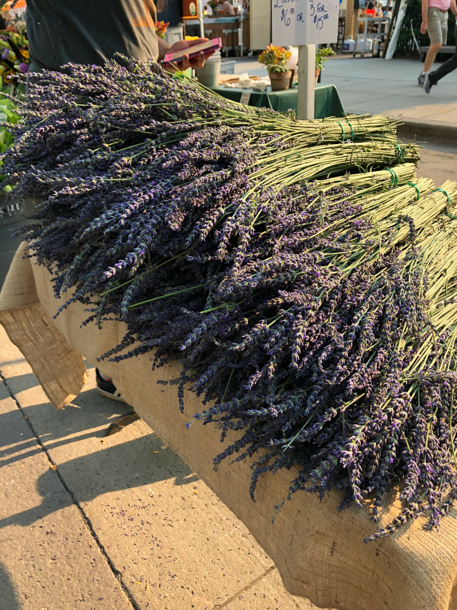 Fresh cut Lavender from the Boulder Farmers Market located in downtown Boulder, Colorado. Open on Saturday mornings.
